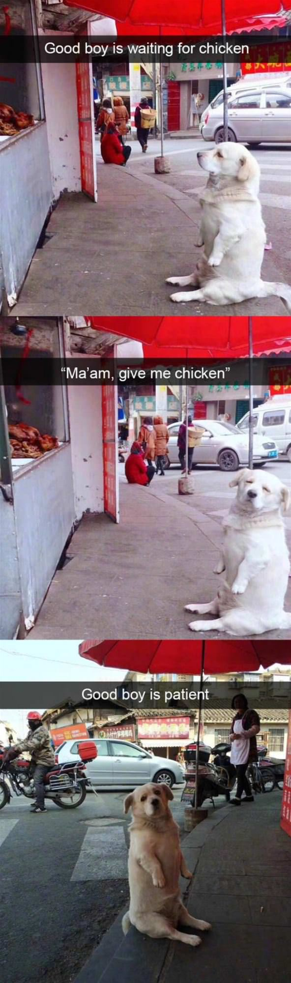 A Chicken Please