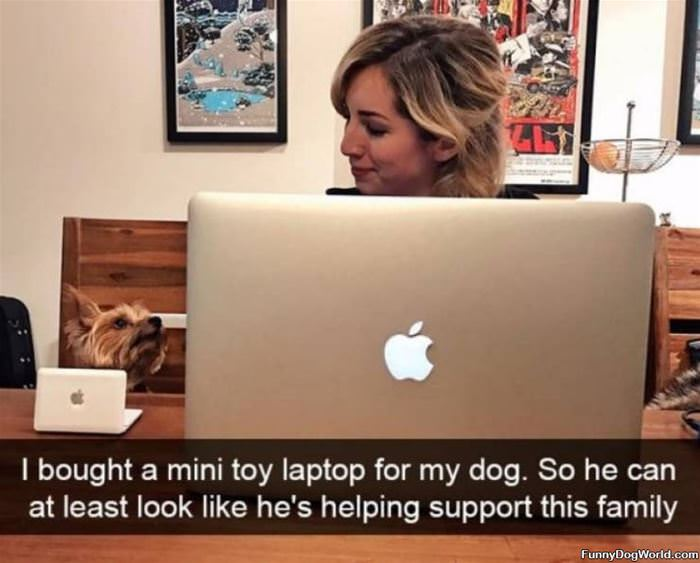A Mini Toy Laptop