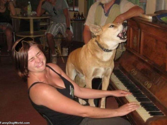 A Sing Along