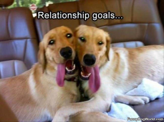 Awesome Relationship Goals