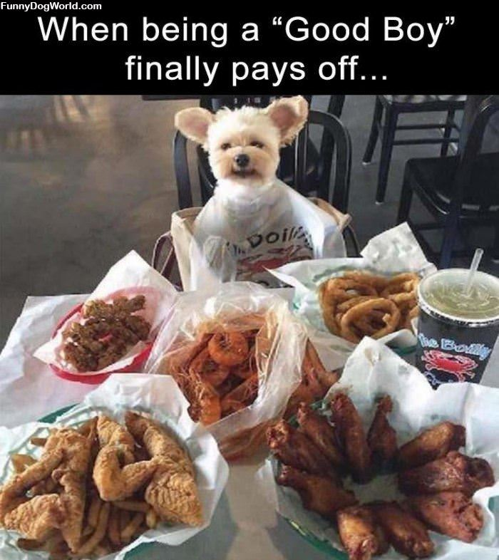 Being A Good Boy Pays Off