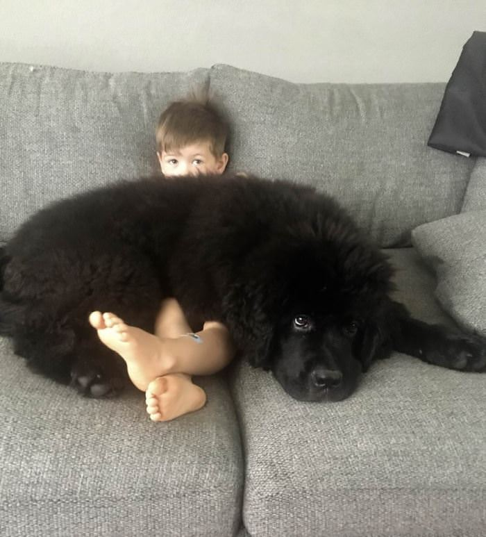 Big Fluffy Blanket