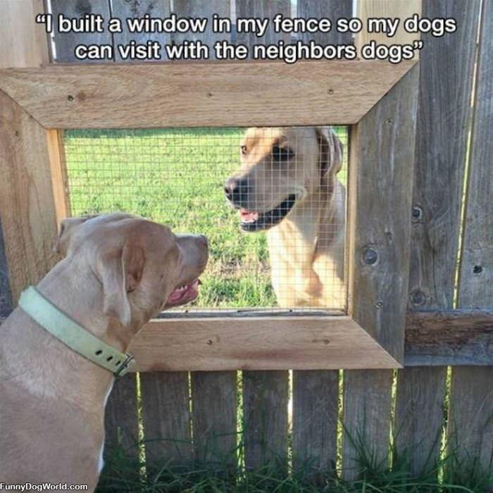 Built A Window