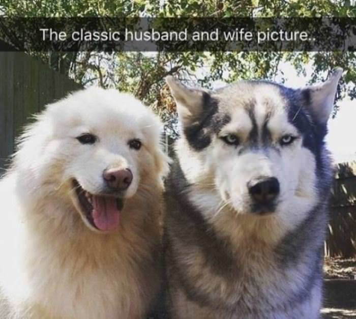 Classic Husband And Wife