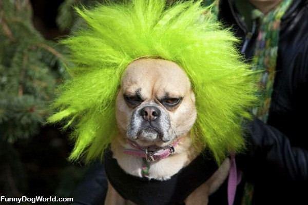 Crazy Green Hair