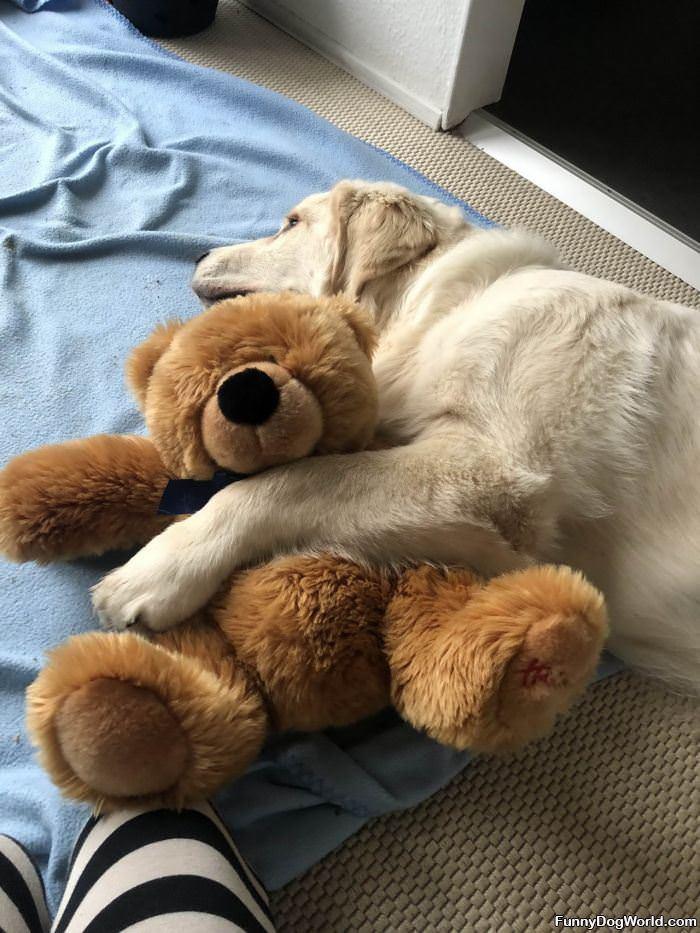 Cuddling My Buddy