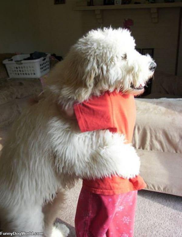 Cute Hugging Dog