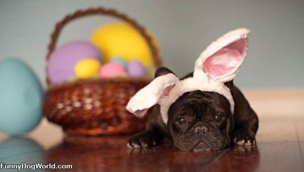 Easter Makes Me Sad