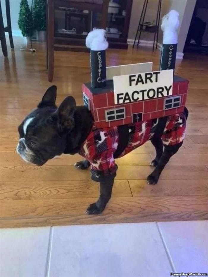 Fart Factory