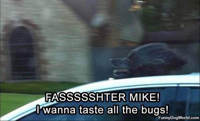 Fasterrrrr Mike