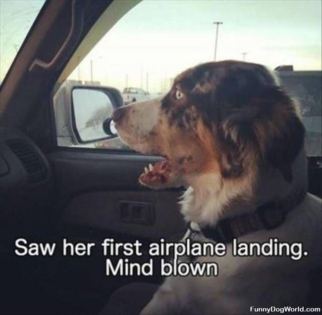 First Airplane Landing