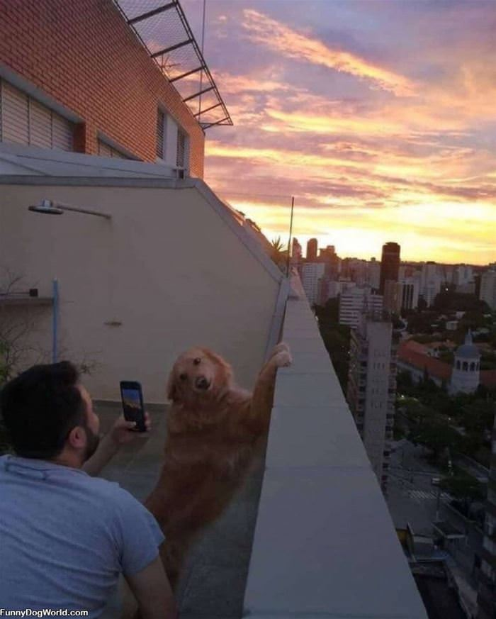 Getting A Great Photo