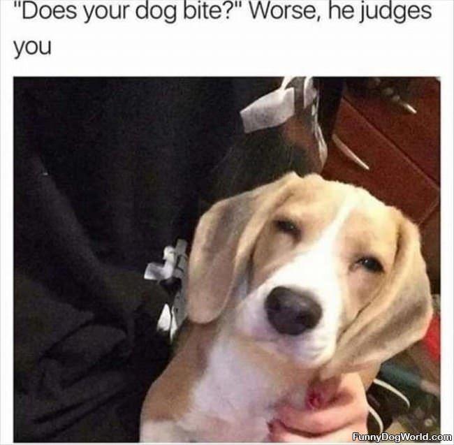 He Judges You