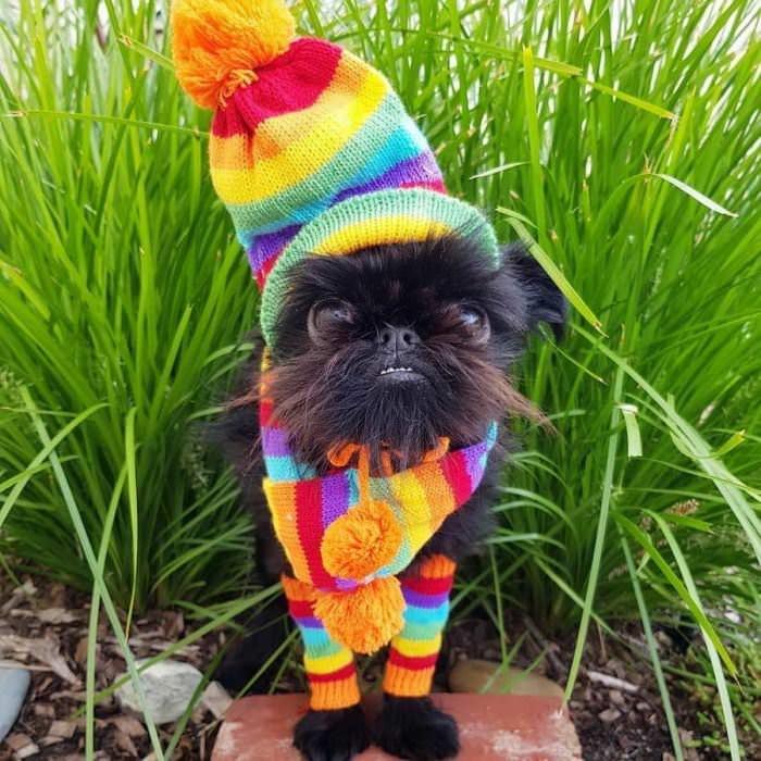 I Am Colorful