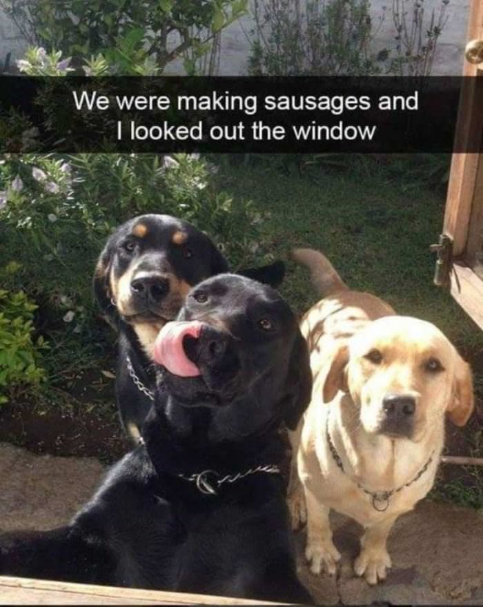 I Was Making Sausages