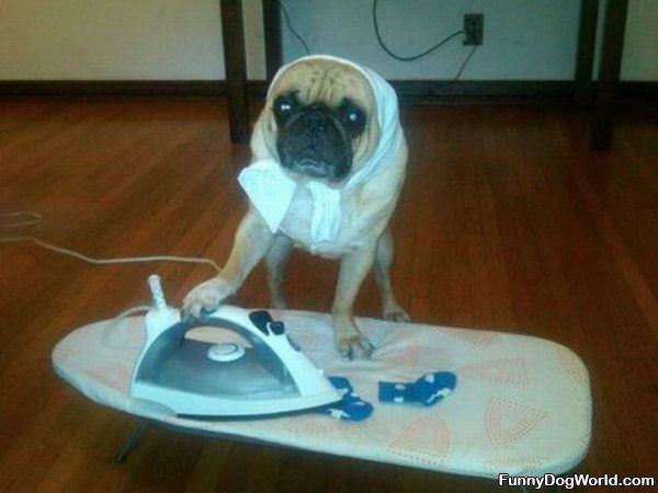 Ironing Your Socks