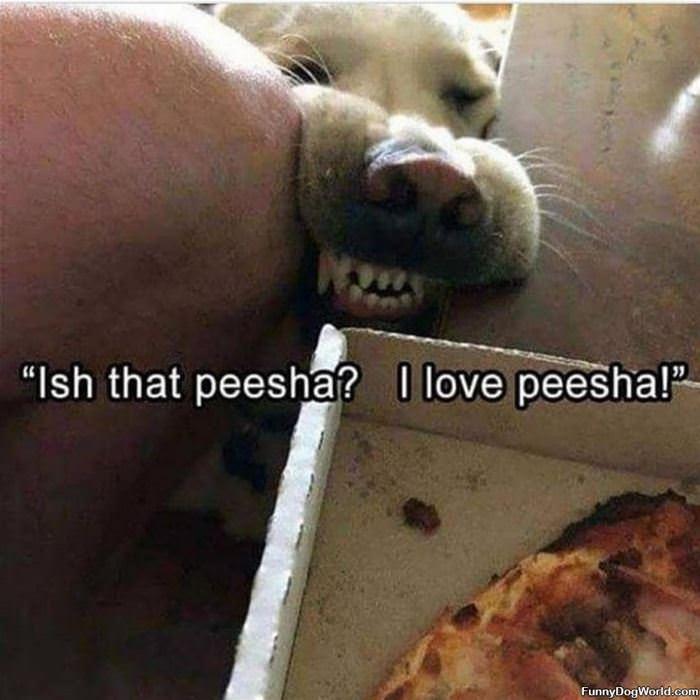 Is That Peesha