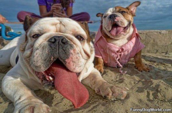 Its A Beach Day
