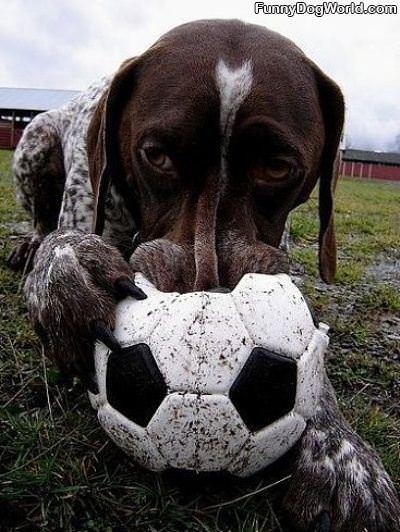 Mah Ball