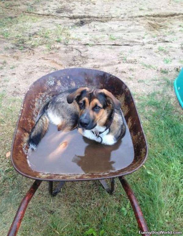 My New Bath Tub