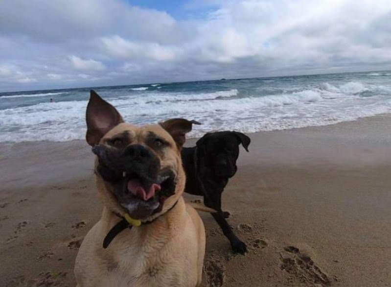 Play Time On The Beach