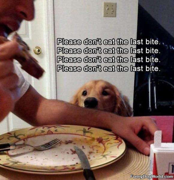 Please Do Not Take The Last Bite