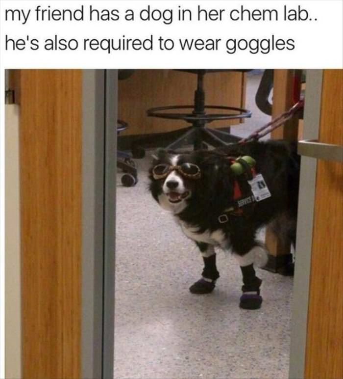 Please Wear Goggles