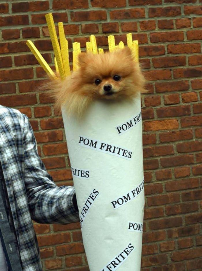 Pom Fries
