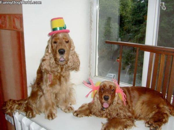 Quite A Party