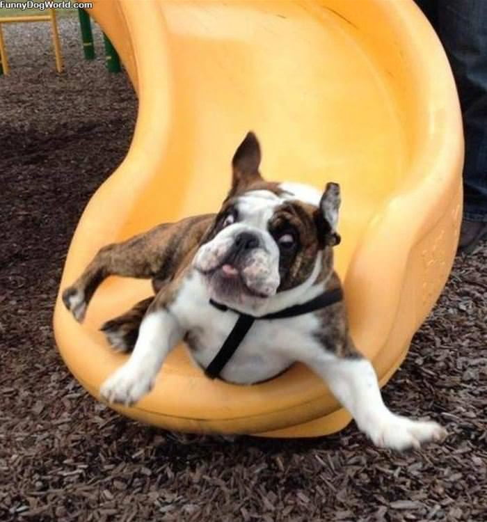 Relaxed And Sliding