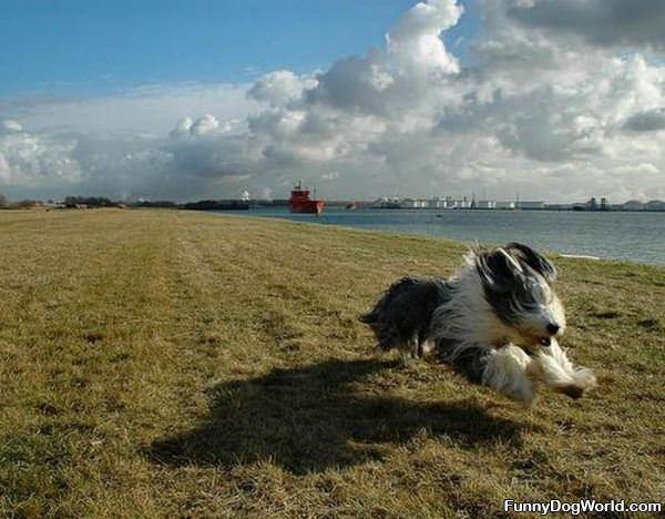 Running Full Speed