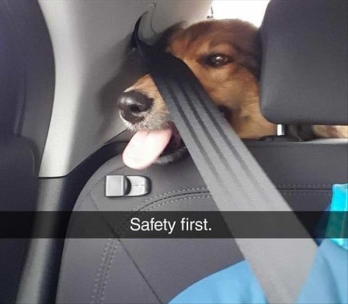 Safety First Please