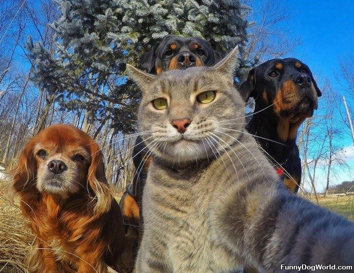 Selfie Of The Whole Crew