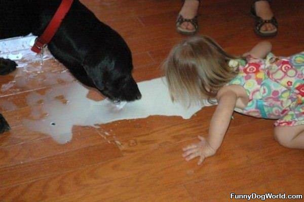 Sharing The Milk
