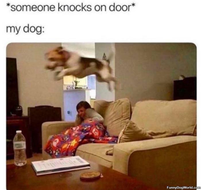 Someone Knocks On The Door