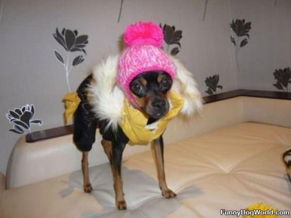 Staying Warm