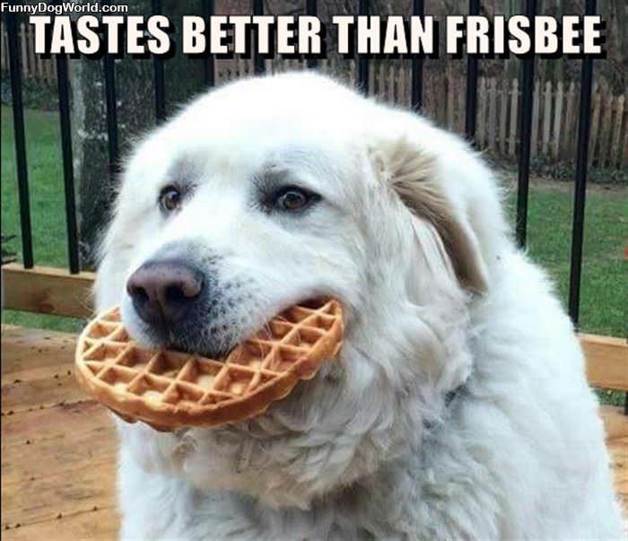 Tastes Better