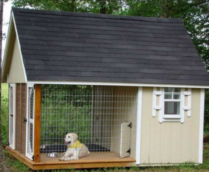 The Coolest Dog House