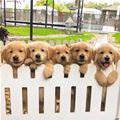 The Fence Of Puppies