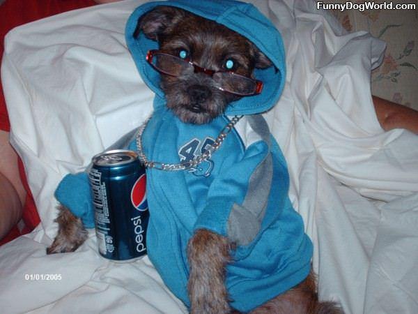 The Pepsi Dog