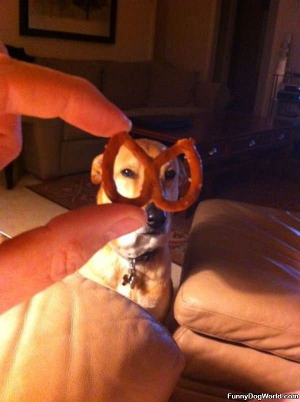 The Pretzel Mask