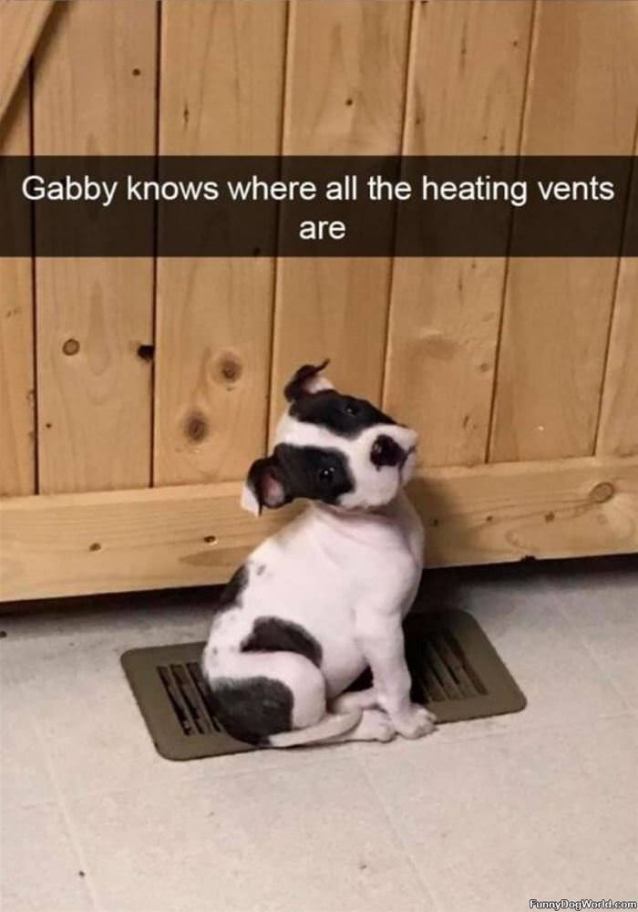The Warm Spot