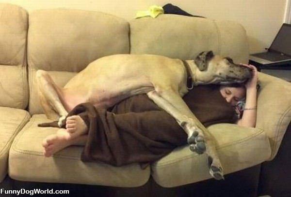 This Is How We Sleep