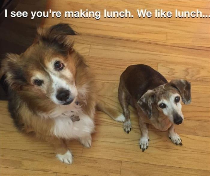 We Also Happen To Like Lunch