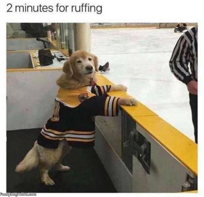 2 Minute Penalty