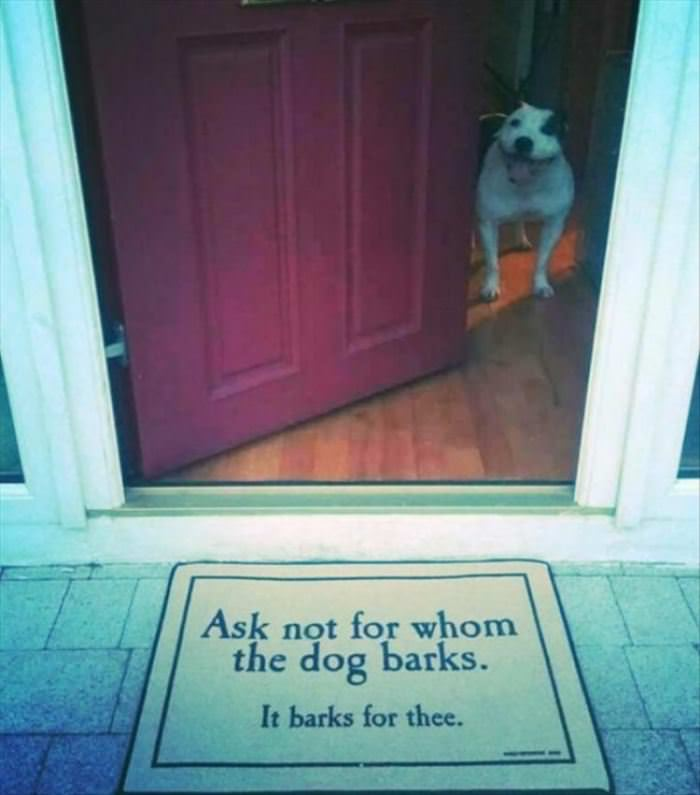Ask Not For Who The Dog Barks
