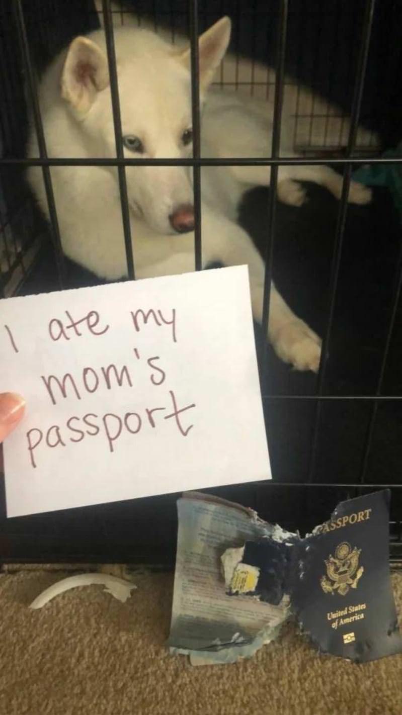 Ate Her Passport