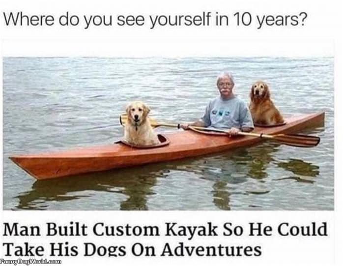 Custom Kayak For Dogs