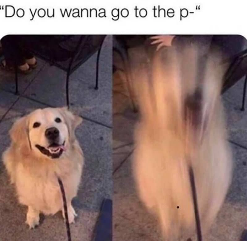 Do You Want To Go To The Park