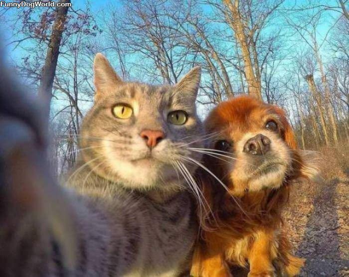 Getting A Cute Selfie